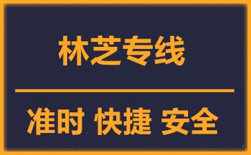 天津到林芝物流公司