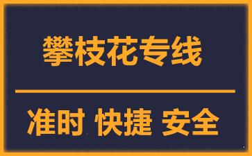 天津到攀枝花物流公司