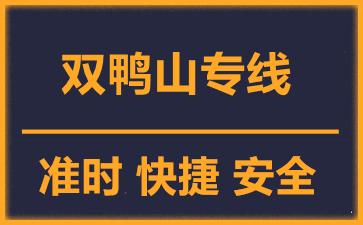 天津到双鸭山物流公司