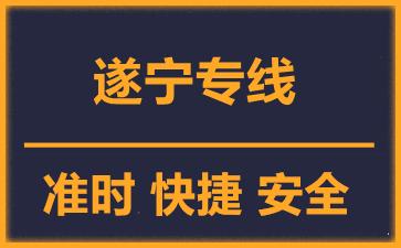 天津到遂宁物流公司