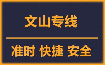 天津到文山物流公司