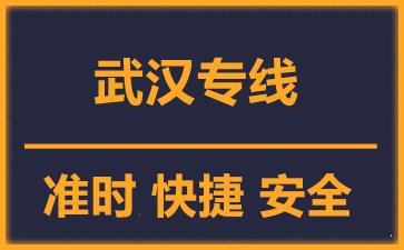 天津到武汉物流公司