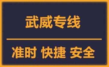 天津到武威物流公司