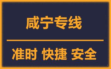 天津到咸宁物流公司