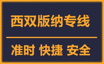 天津到西双版纳物流公司