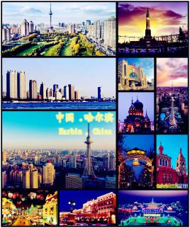 天津到哈尔滨物流专线,天津到哈尔滨物流公司,天津到哈尔滨货运专线2
