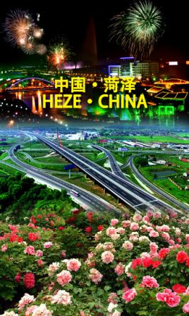 天津到菏泽物流专线,天津到菏泽物流公司,天津到菏泽货运专线2