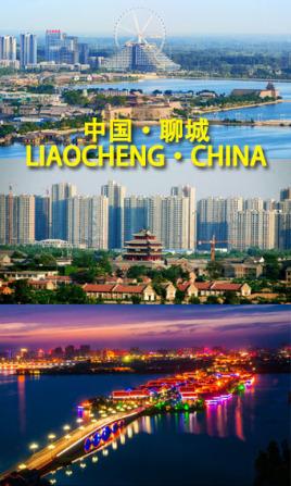天津到聊城物流专线,天津到聊城物流公司,天津到聊城货运专线2