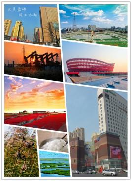 天津到盘锦物流专线,天津到盘锦物流公司,天津到盘锦货运专线2