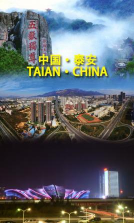 天津到泰安物流专线,天津到泰安物流公司,天津到泰安货运专线2