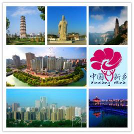天津到新乡物流专线,天津到新乡物流公司,天津到新乡货运专线2