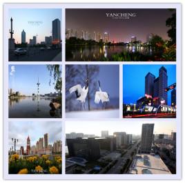 天津到盐城物流专线,天津到盐城物流公司,天津到盐城货运专线2