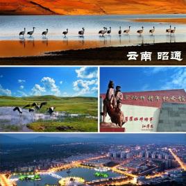 天津到绥江县物流专线,天津到绥江县物流公司,天津到绥江县货运专线2